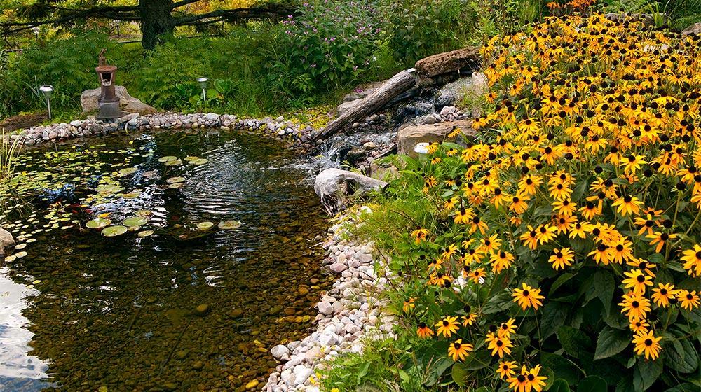 Petit tang avec cascade d 39 eau plani paysage for Cascade d eau jardin